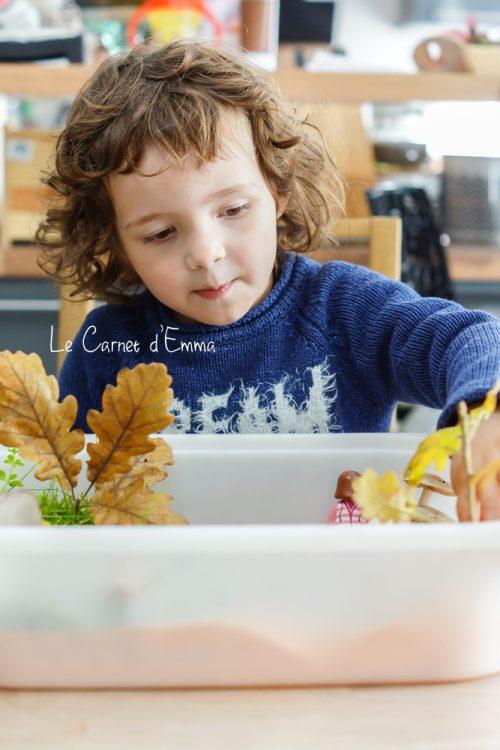 bac sensoriel d'automne, activité enfant, montessori