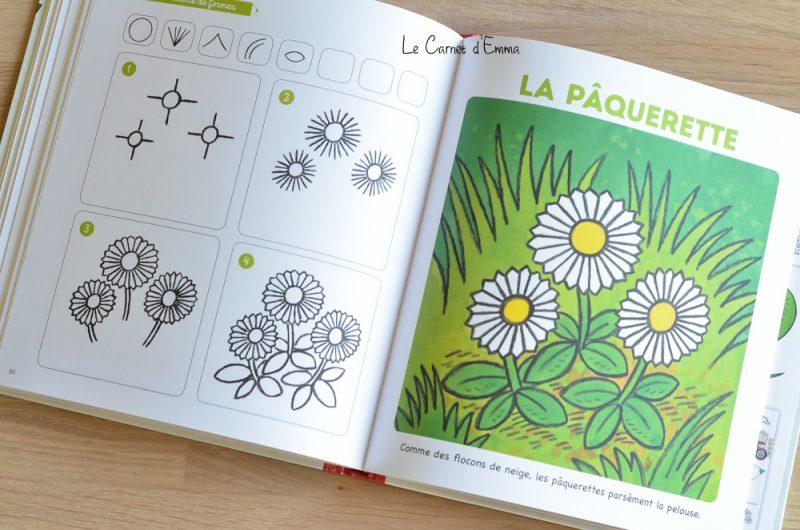 Livres pour apprendre à dessiner avec la méthode Philippe legendre édition fleurus j'apprends à dessiner