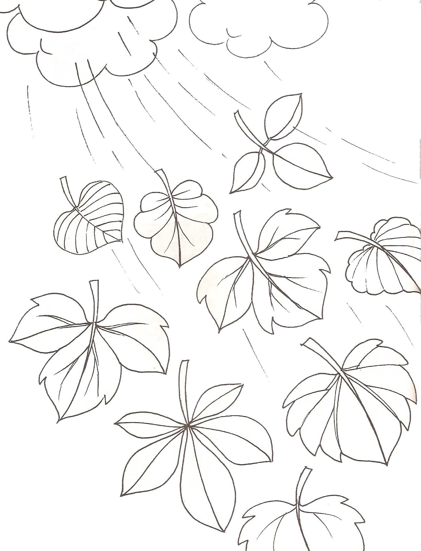 coloriage d'automne